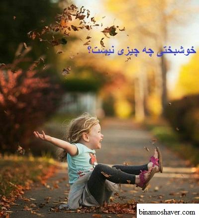 خوشبختی چه چیزی نیست؟